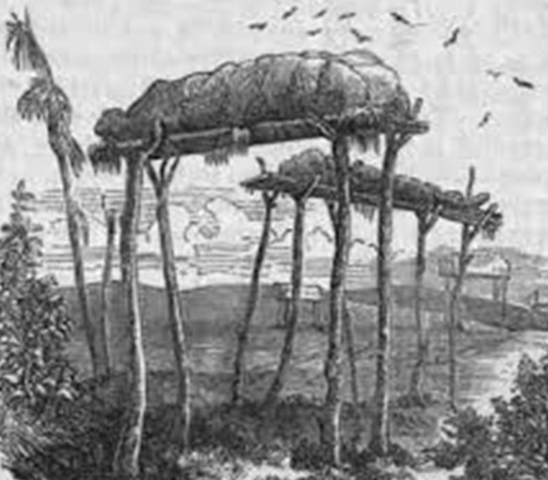 Burial Poles 2