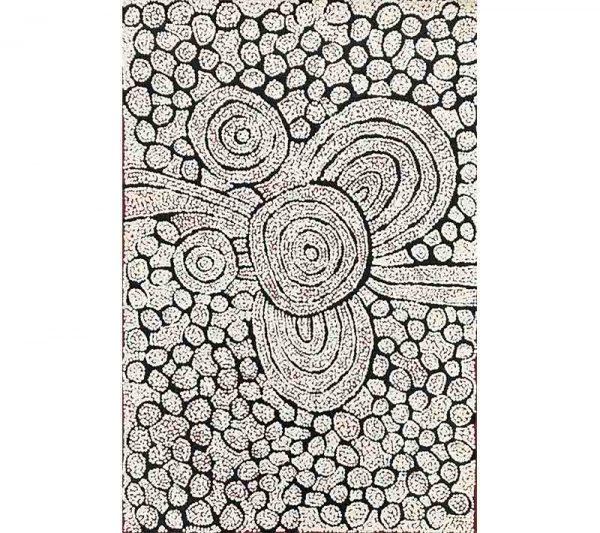 Aboriginal artworks by Katherine Nakamarra